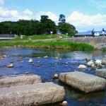 Kamogawa River1